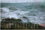 28风与浪