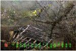 88【神州大地】陆河-《断垣残壁》