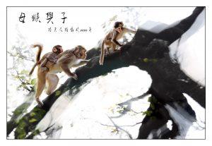 08母猴与子