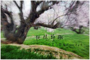 14桃林野趣