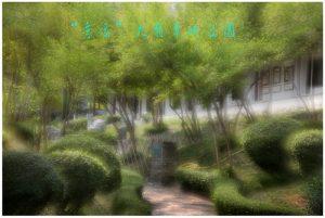 "16""意像""九龙寨城公园"