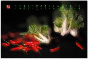 """80 """"化彩""""摄影《蔬菜》"""