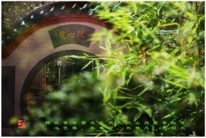 """94 """"化彩""""摄影《黄大仙祠啬色园》"""