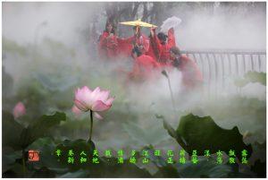 63《亚艺荷塘》