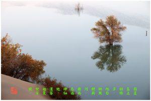 92【神州大地】南疆-葫芦岛